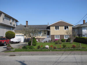 Beautiful House (FULL) Available FEB 1st in Queensborough DEAL!!
