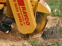 Stump Grinding/Removal