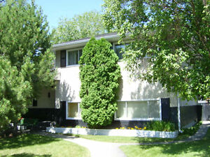 For rent two  bedroom  suite. Close to the University of Calgary