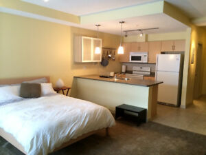 Furnished Studio Apartment with Designated Parking and A/C