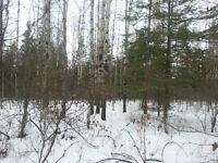 Desirable Land for Hunters, Recreational Enthusiasts - MUST SELL