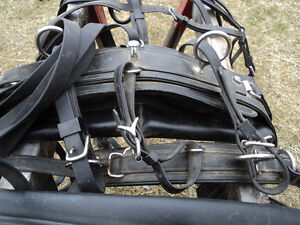 NEW PRICE! Harness maker crafted Biothane Driving Harness Belleville Belleville Area image 6