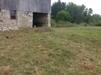 Barn For Rent in Stirling/Rawdon