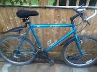"""Mens 23"""" Apollo bicycle. Inc new lights & mudguards. Free delivery. D lock available"""