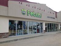 Fetch Haus - Pet Grooming & Retail Store