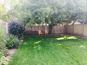 3bedroom house for rent-amazing backyard!
