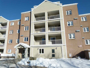 Large 1 Bedroom with full size kitchen available November 1st