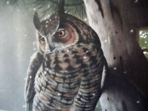 """Hand Signed Wildlife Lithograph by L. E. Robinson """"The Watcher"""" Stratford Kitchener Area image 4"""