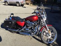 2008 XL 1200 Custom Sportster