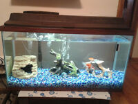 45 gallon tank & other for sale