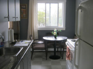 LG 1 BR FULLY FURNISHED APARTMENT