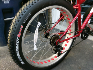 Schwinn Biggity Fatbike - Brand New - Disc Brakes - Bike Rack