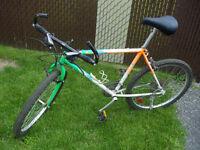Vélo de montagne AVP - Modèle Orford