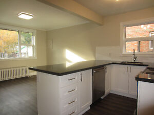 NEWLY RENOVATED COZY 2BED in LESLIEVILLE/UPPER BEACHES!!!