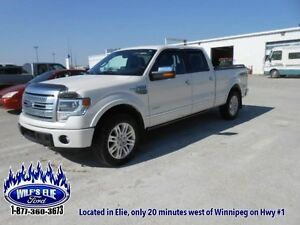 2014 Ford F-150 Platinum   Leather - Navigation