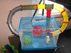 Hamster cages made to your liking we build it