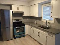 2BR+1.5Bath in Brand New house in Central Location