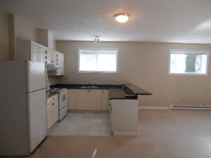 broadmead area 1 bedroom 1000sq. ft. open concept available now