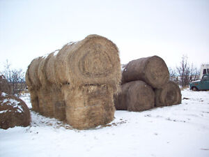 Hay for sale in Rich Valley Ab.