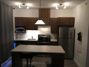 Furnished 2 1/2 Apartment in Longueuil