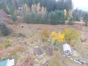 Rare 5 acre parcel for sale in Nelson