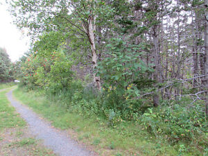 54 POINT ROAD, CHAPEL'S COVE…PRIVATE LOT.. St. John's Newfoundland image 3