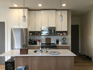Modern 2 bedroom apartment steps from downtown (July-September)