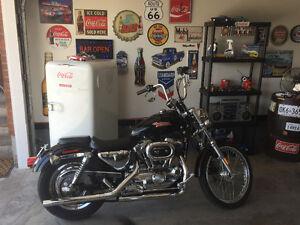 2001 Harley Davidson Sportster Xl1200C For Sale