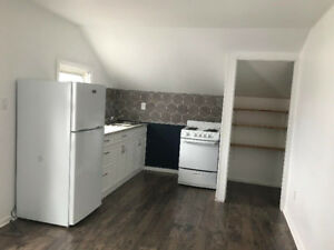 Big & Roomy Downtown Loft! No More Taxis: 'WalkScore' of 90!