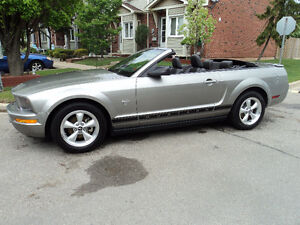 2009 Ford Mustang pony pkg. Convertible