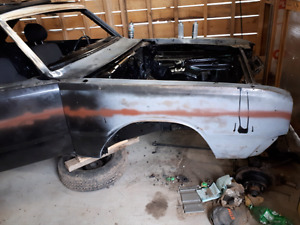 Looking for 1975 dodge dart parts or parts car
