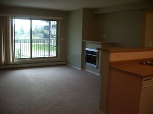 2 Bedroom Condo Located in West End, Callingwood Area