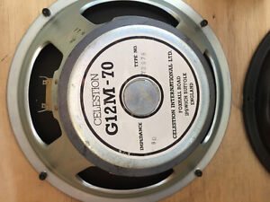 "12"" celestion and peavey speakers"