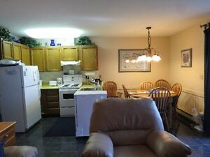 Beautiful 1 bedroom Lake Okanagan Resort condo for winter renter