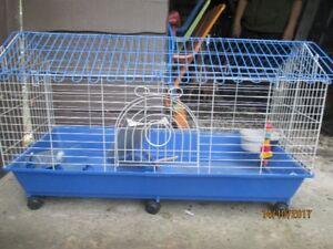 Medium cage for rabbit or guinea pig