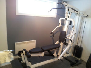 Station de musculation multifonction solide Northen Lights