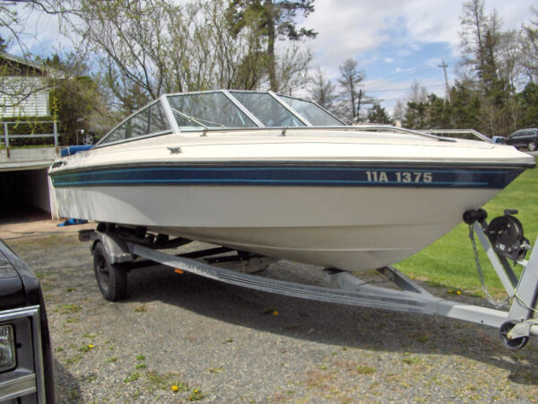 Used 1988 Peterborough/Alcan runabout