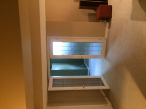 Basement for rent (Looking for female roommate)