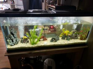 55 gal tank and stand