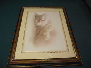 Adorable cat picture with frame