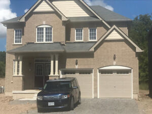 Room for Rent -Niagara Kalar/Browns Line - New Empire Large Home
