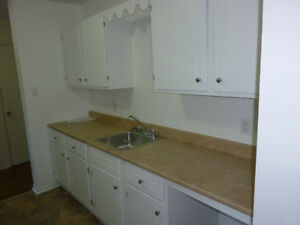 270 Willett St./ CLAYTON PARK 2-BDR Apart. for November 1