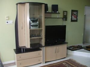 Attractive TV / Wall Unit - Like New