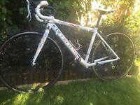 Carrera Virtuoso LTD Edition 2012 Road Bike