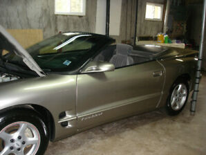 !!! 1999 FIREBIRD CONVERTIBLE OWNED BY SENIOR !!!