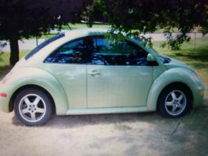 VW Beetle for trade fresh MVI