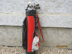 Assorted golf clubs with bag and cart