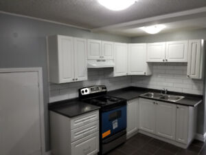 Beautiful, Large One bedroom Apartment Available for Rent