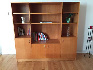 Wall Unit, with lots of room for storage.