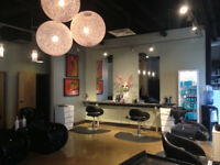 LOOKING FOR HAIRSTYLIST AT LUXURY SALON ON CORYDON